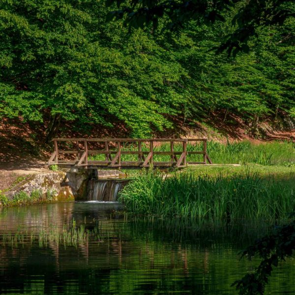 Landscape View Of The Artificial Lake. A Wooden Bridge Between T